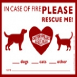 Rescue Me–free Rescue Me Window Sticker From Castor & Pollux