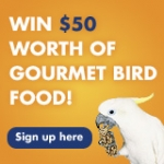 Free Pet Bird Food Catalog