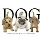 Free Sobe-dog.com Tag