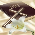 Free New Testament Bible
