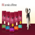 Free Sample Of Purina One Dog Food