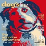 Dog's Life Magazine