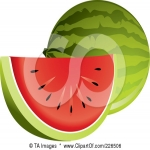 Watermelon Slice Coloring Book