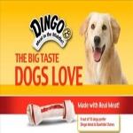 $20 In Dingo Coupons Via Facebook