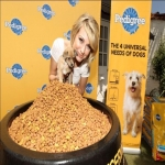 Free Month Of Pedigree Food For Newly Rescued Dogs