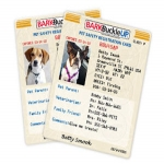 Free Bark Buckle Up Pet Safety Kit