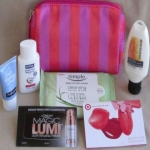 Target Fall Beauty Bag