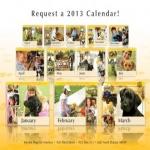 2013 Service Dogs For America Calendar