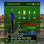 Download Of Tiger Woods Pga Tour 12