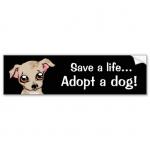 Lifes A Dog Bumper Sticker