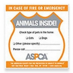 Pet Safety Pack
